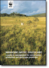 Managing Native Grassland