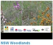 Woodlands video
